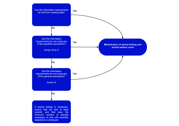 Key messages for registrants flow chart