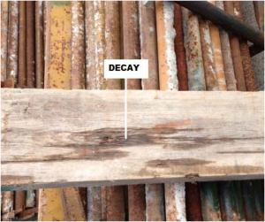 scaffolding board showing signs of decay